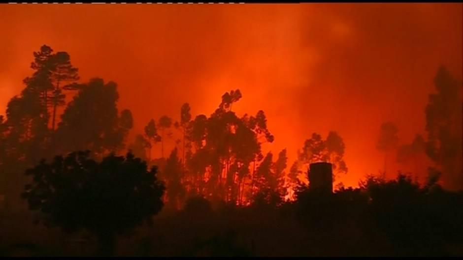 Video: Heftige Waldbrände in Portugal