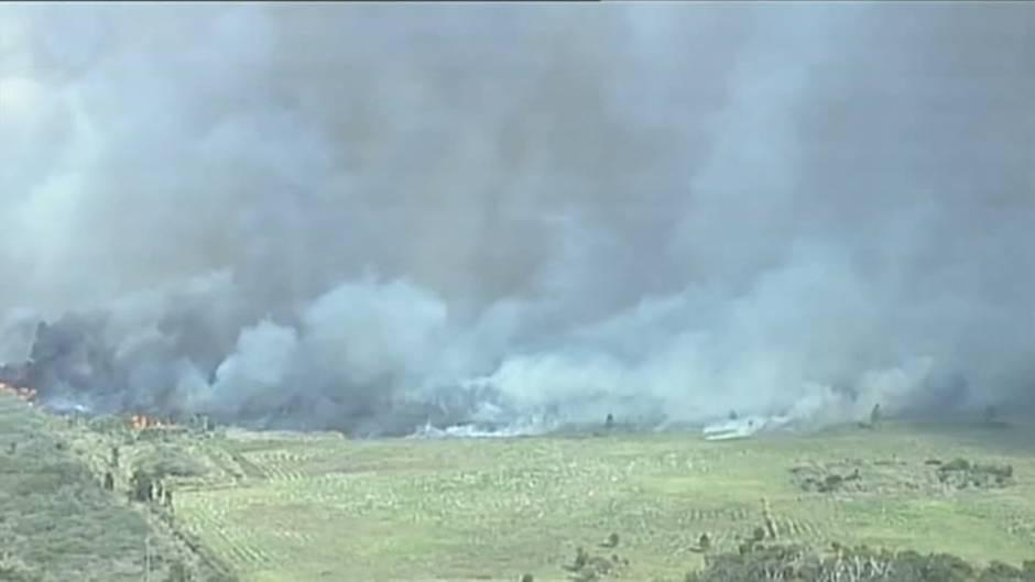 New South Wales: Verheerende Buschbrände in Australien zerstören zahlreiche Häuser – mehrere Menschen werden vermisst