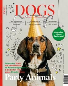 Ein brauner Hund mit Partyhut