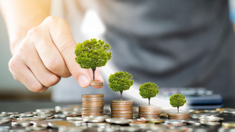 Nachhaltige Investments sind in Mode