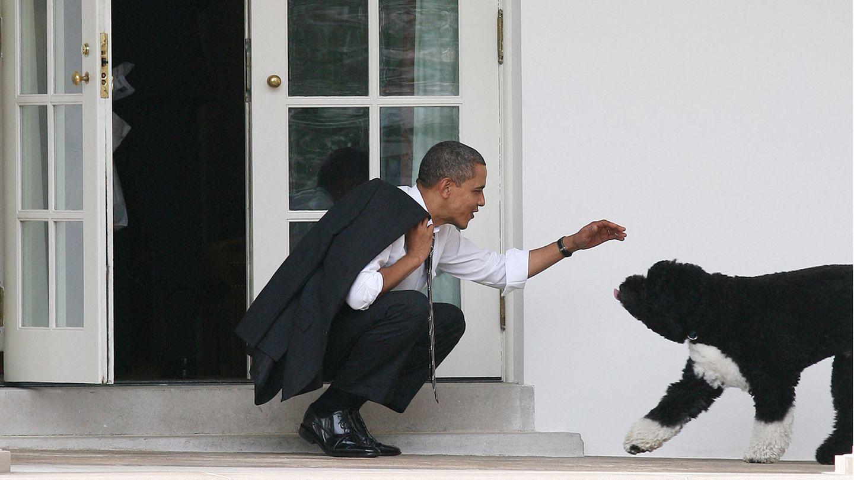 Barack Obama kniet und begrüßt seinen Hund Bo